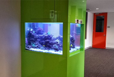 aquarium services Perth Australia